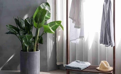 Interiör med målad vägg
